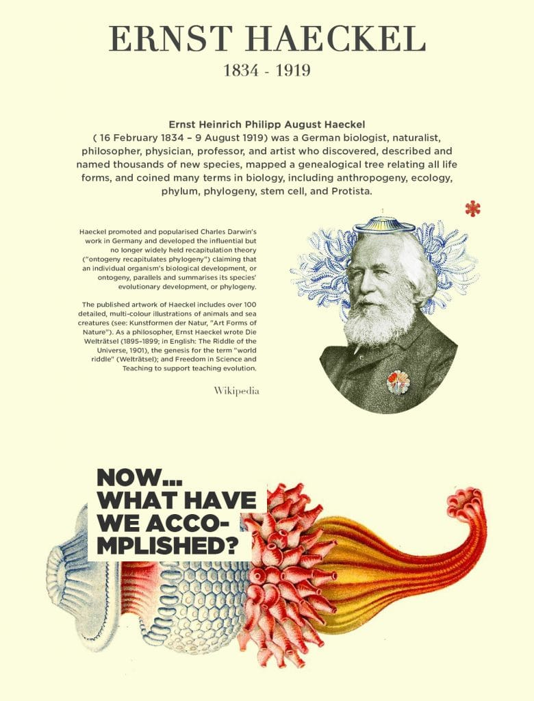 Free Font Friday: Ernst Haeckel - Notes on Design   Sessions