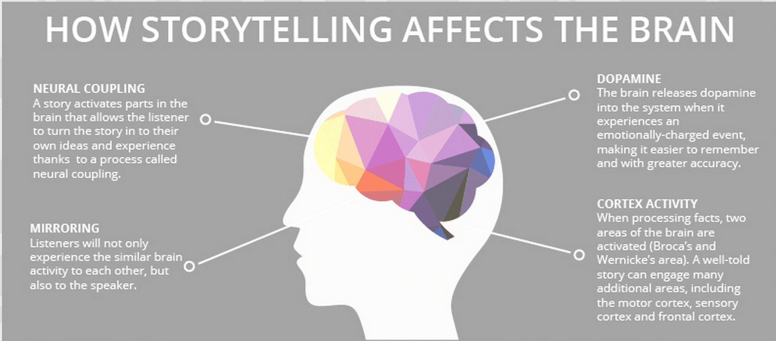 How Storytelling affects the brain