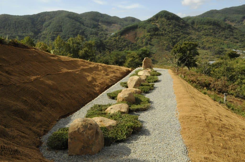 Jiri Mountain Tea Line by Christopher Drury