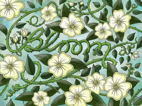 Bloom typography by Paul Green