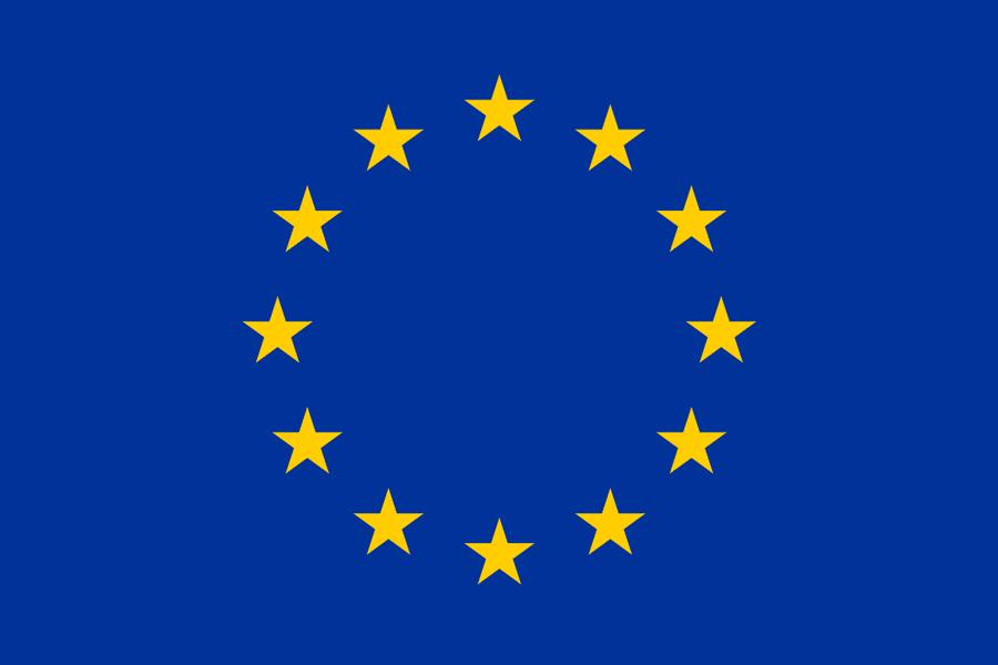 Google's Landmark ECJ Win