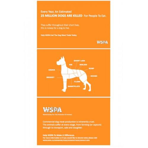 Graphic Design Certificate Az
